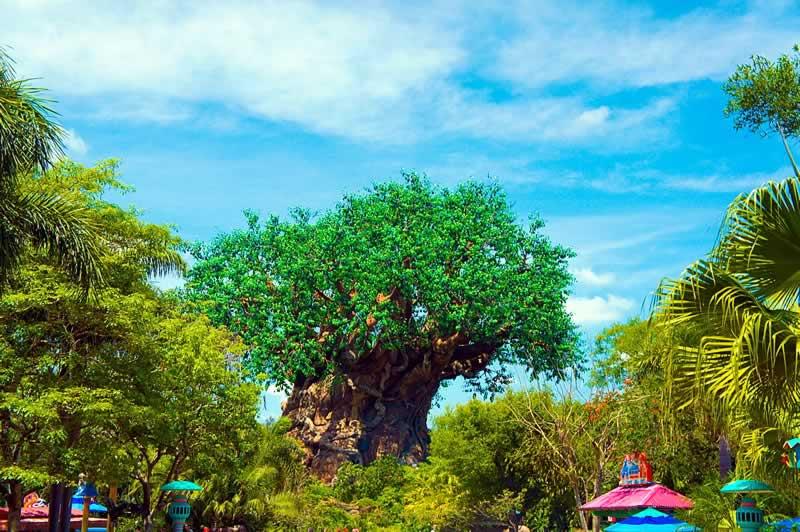 árvore da vida no parque animal kingdom da disney