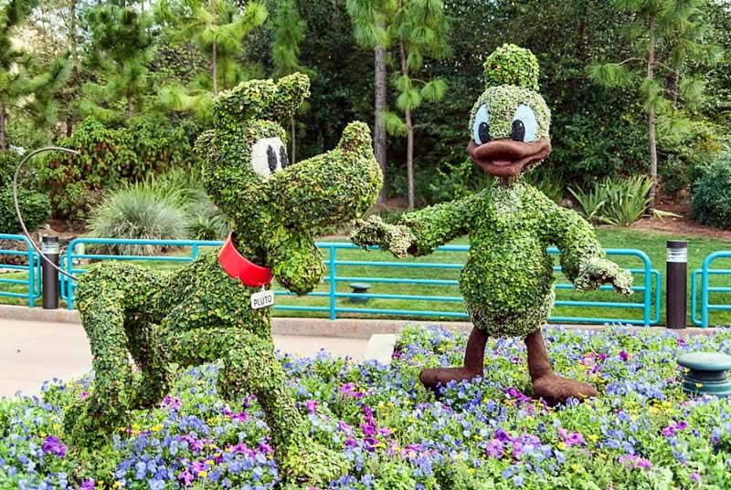 escultura pluto e pato donald no international flower and garden festival do epcot